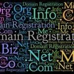 Registrazione domini per la tua presenza online